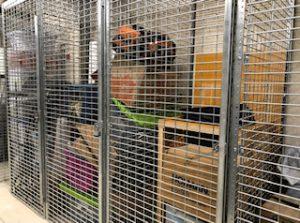 Tenant Storage Lockers NYC 10029