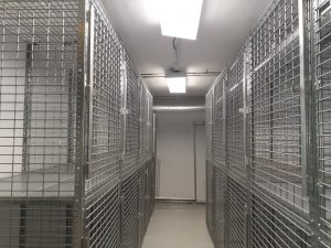 Storage Cages Rdigewood NY